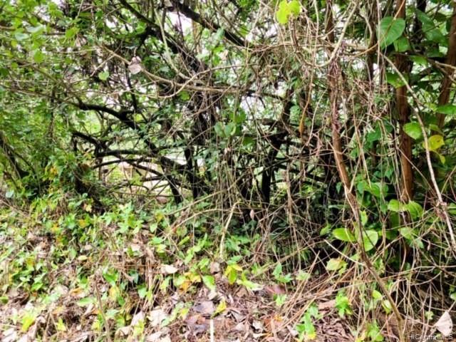 . N Ohiki St  Pahoa, Hi 96778 vacant land - photo 5 of 7