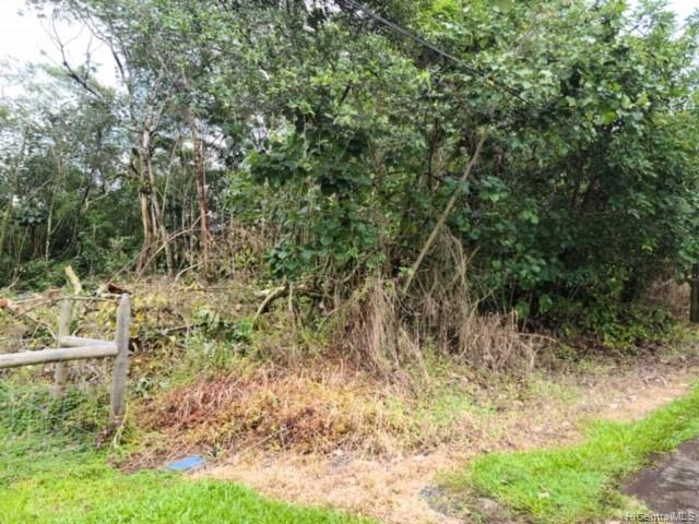 . N Ohiki St  Pahoa, Hi 96778 vacant land - photo 6 of 7