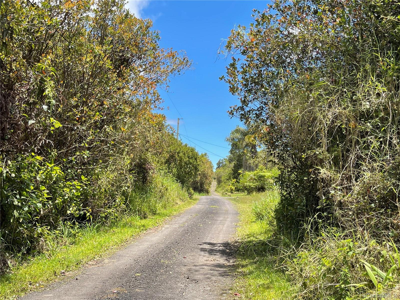 . Road 9 Road Lot 510 Mountain View, Hi 96771 vacant land - photo 2 of 5