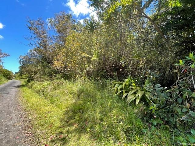 . Road 9 Road Lot 510 Mountain View, Hi 96771 vacant land - photo 3 of 5