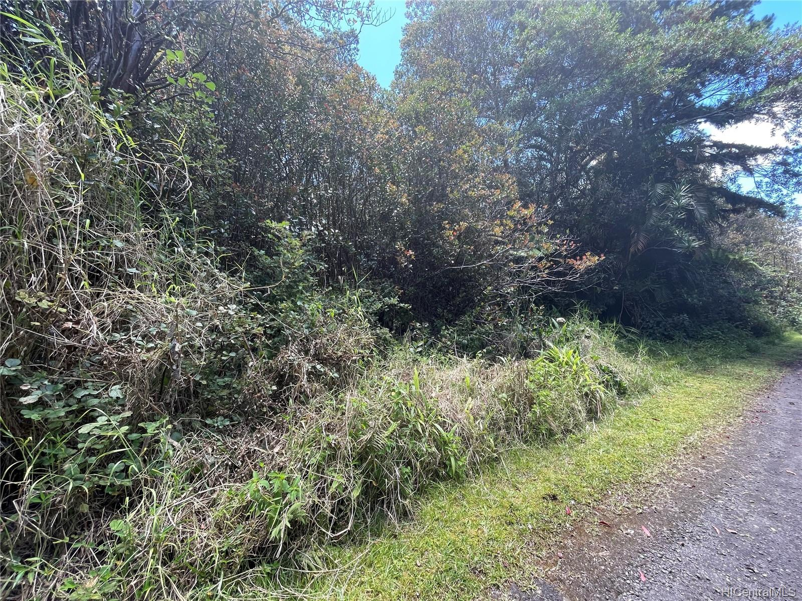 . Road 9 Road Lot 510 Mountain View, Hi 96771 vacant land - photo 4 of 5
