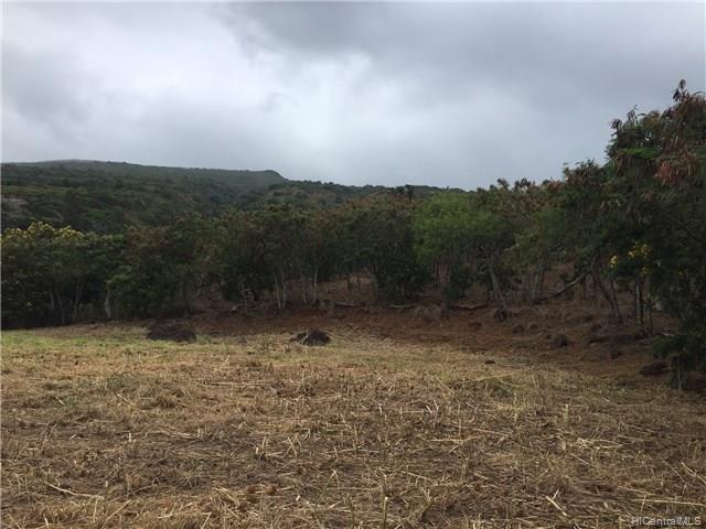 00000 E Kamehameha V Hwy Kaunakakai, Hi 96748 vacant land - photo 7 of 16