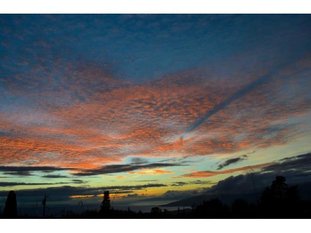 10  Palena Pl Makawao, Maui home - photo 21 of 21