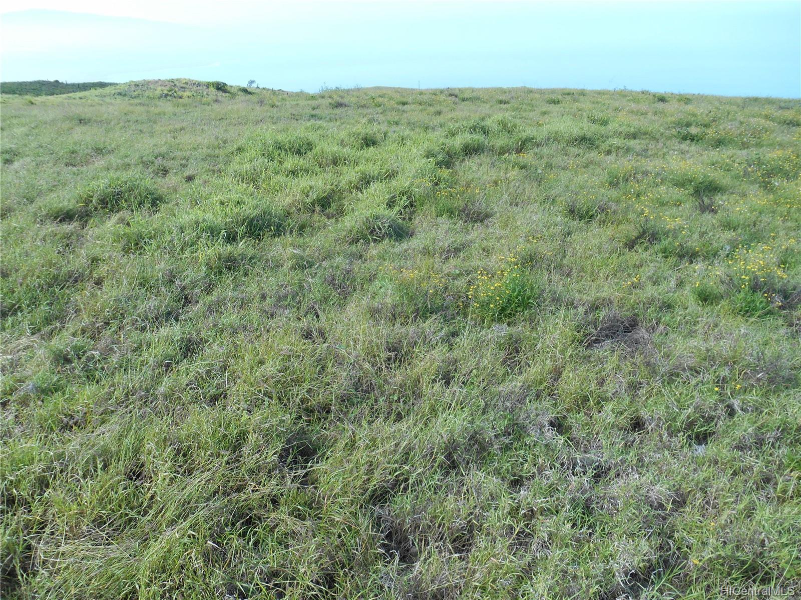 100 Ou Place  Kamuela, Hi 96743 vacant land - photo 2 of 9