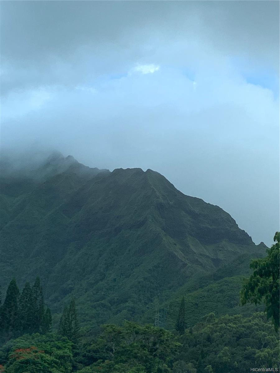 Poinciana Manor condo # 244, Kailua, Hawaii - photo 24 of 24
