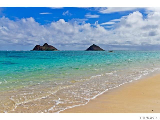 1193  Mapuana St Keolu Hills, Kailua home - photo 24 of 25