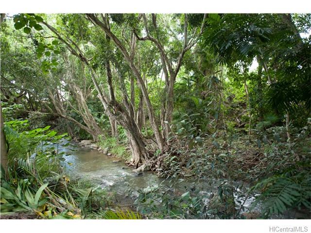 120  Hanupaoa Pl Manoa Area, Honolulu home - photo 17 of 20