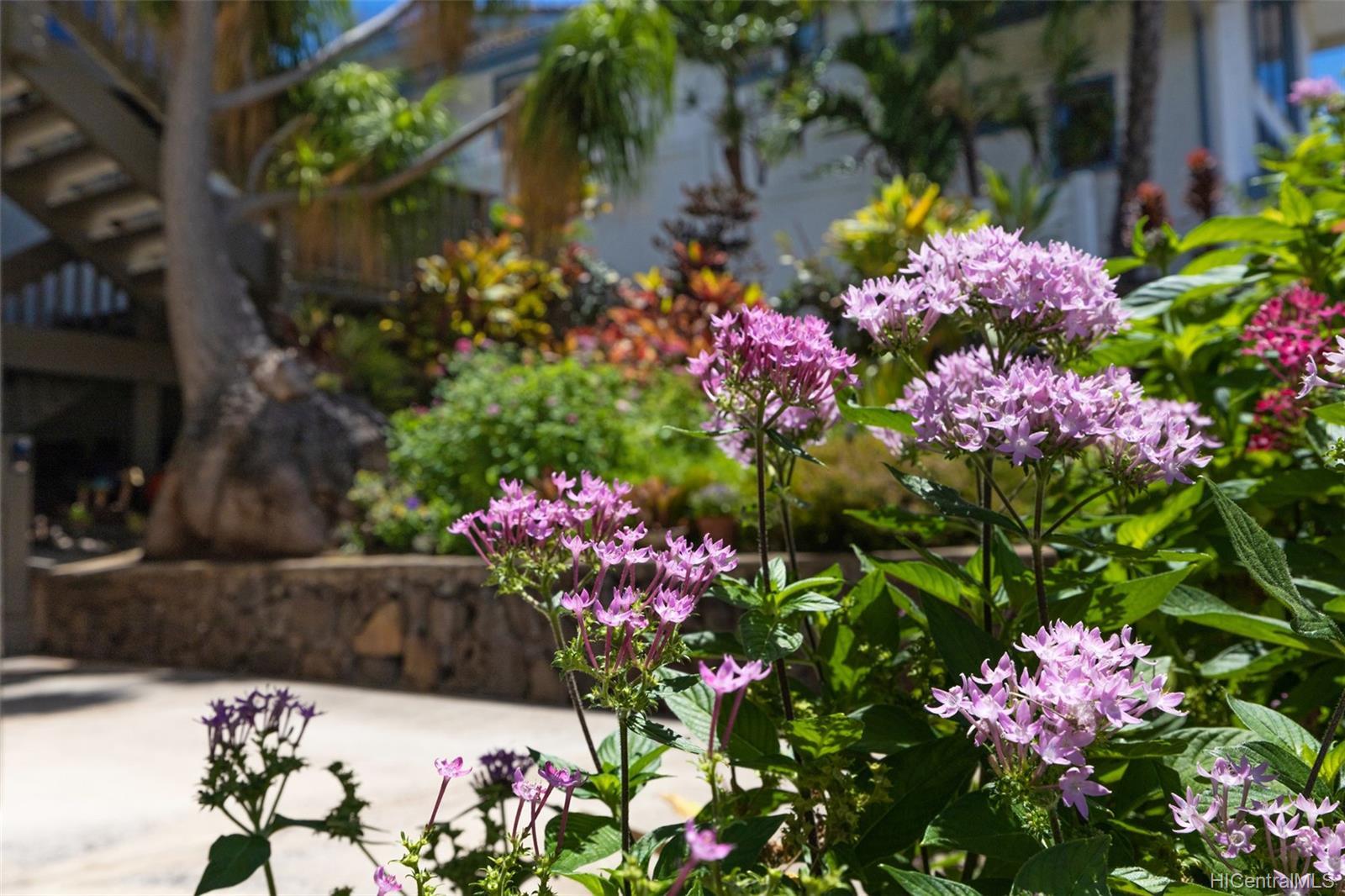 1245  Kaeleku Street Kalama Valley, Hawaii Kai home - photo 25 of 25