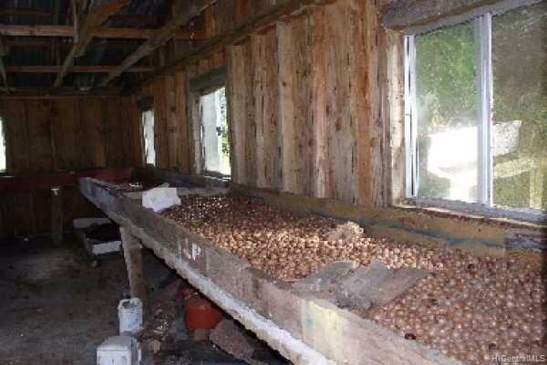 14-3855  Railroad Ave Kapoho, Puna home - photo 13 of 16