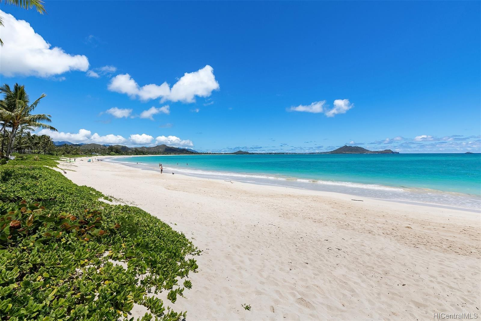 146  Kalaheo Ave Beachside, Kailua home - photo 1 of 25