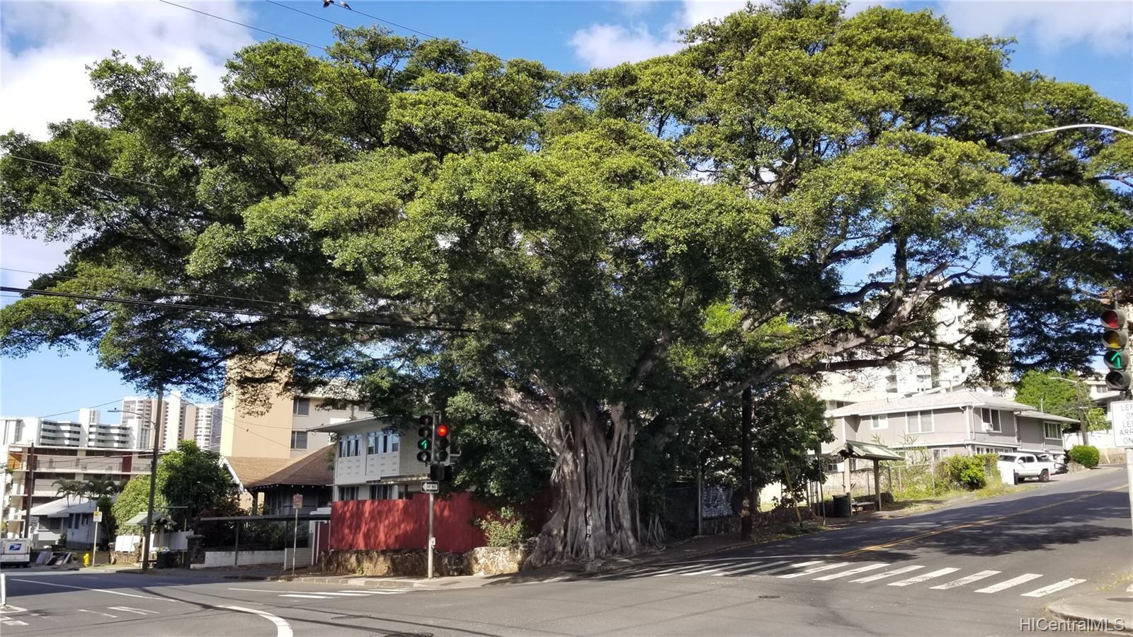 1576 Pensacola Street Honolulu - Multi-family - photo 20 of 20