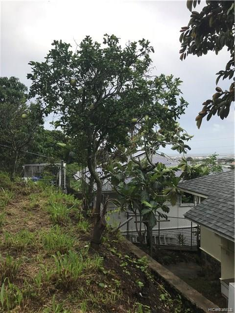 1853  Kalihi Street Kalihi-lower, Honolulu home - photo 17 of 21