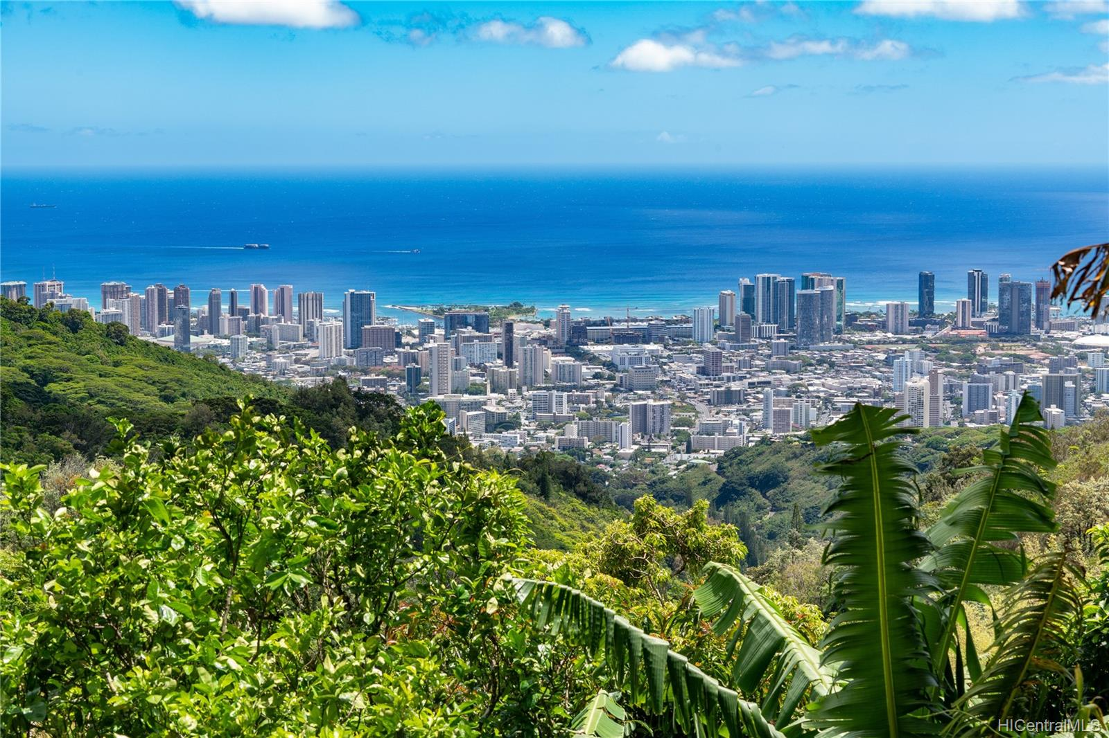 215  Forest Ridge Way Tantalus, Honolulu home - photo 1 of 22