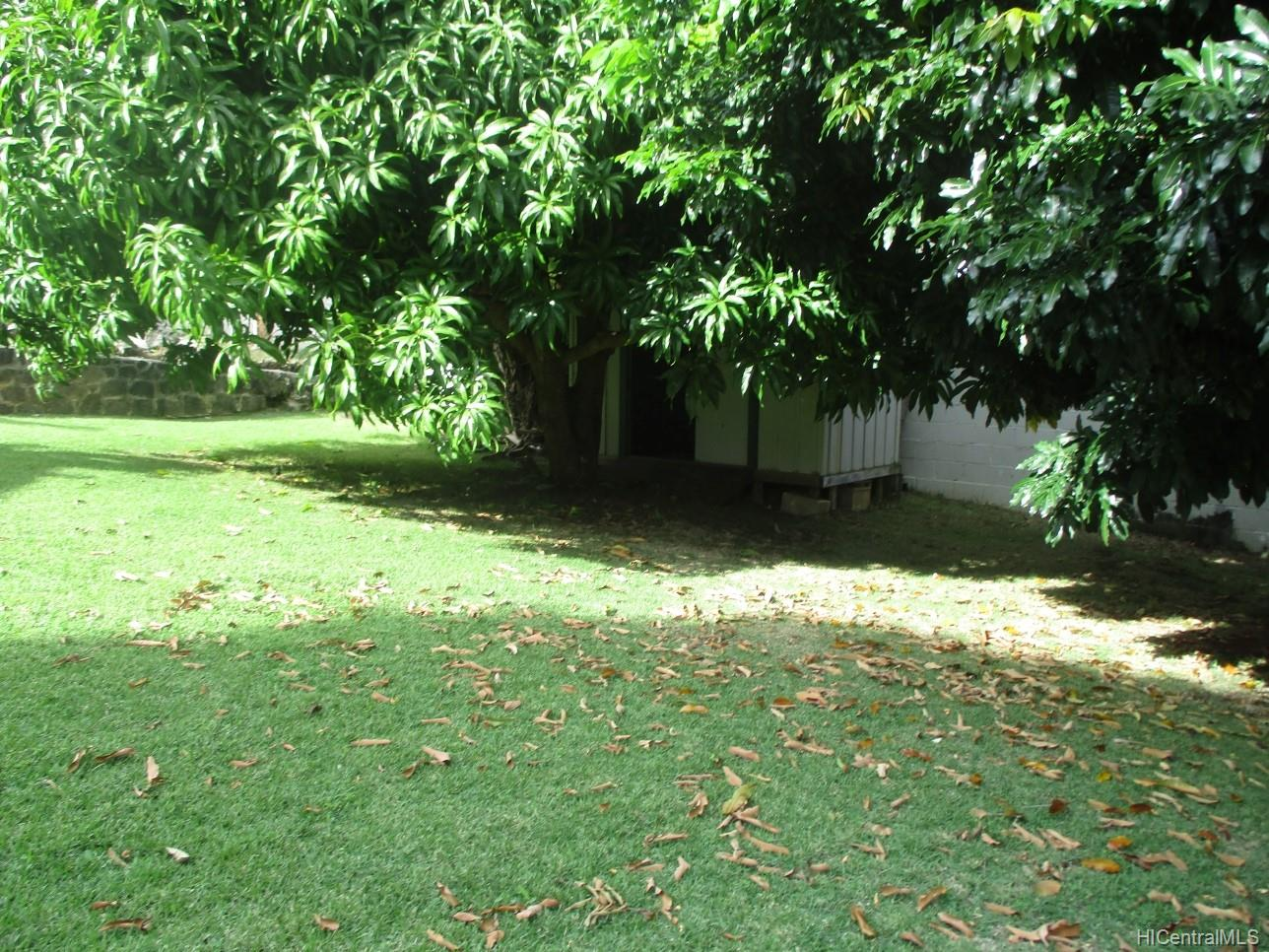 2234  University Ave Manoa Area, Honolulu home - photo 8 of 19