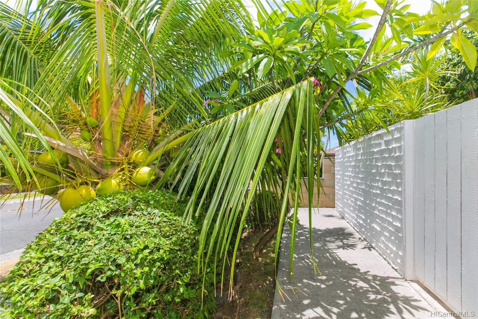 262  Panio Street Niu Valley, Diamond Head home - photo 9 of 25