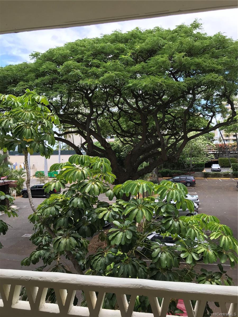 Castle Surf Apts condo # 27, Honolulu, Hawaii - photo 13 of 16
