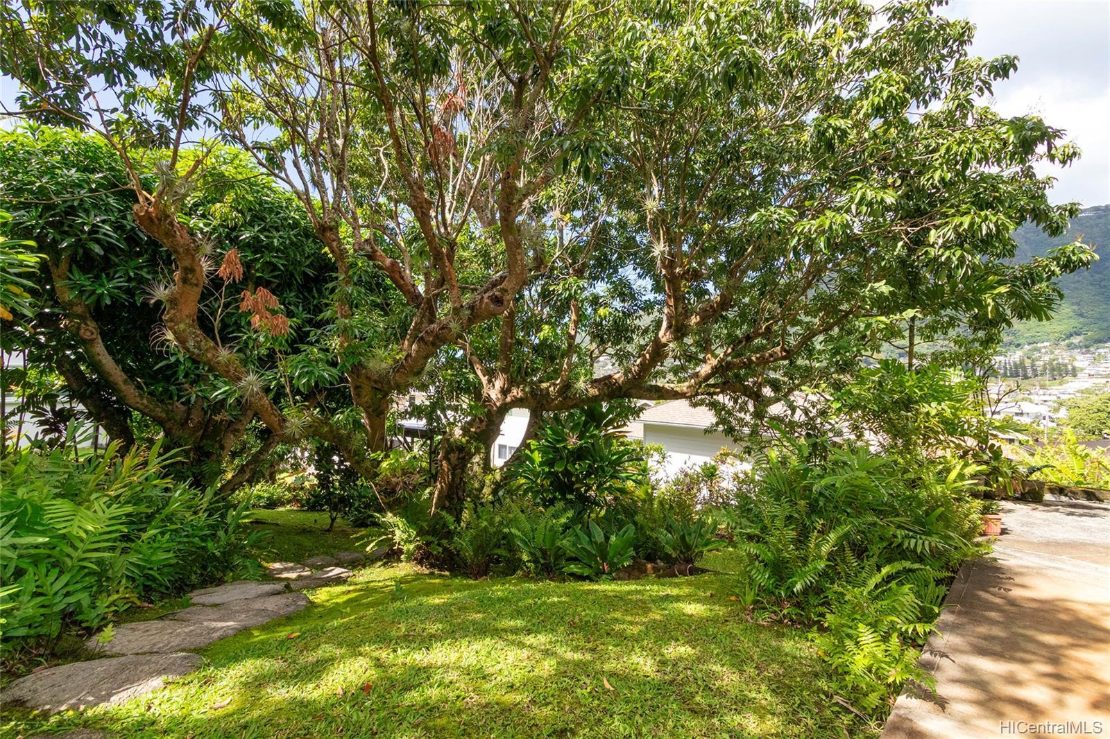 3208  Woodlawn Drive Manoa-woodlawn, Honolulu home - photo 19 of 25
