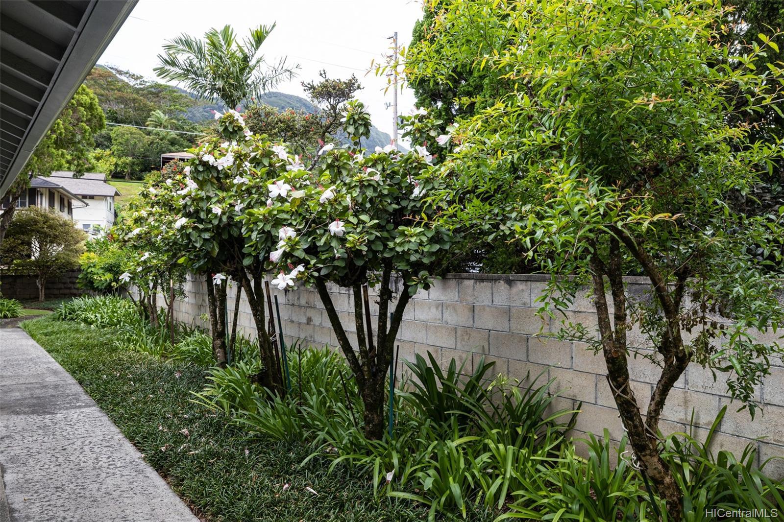 3505  Akaka Place Manoa-woodlawn, Honolulu home - photo 20 of 25