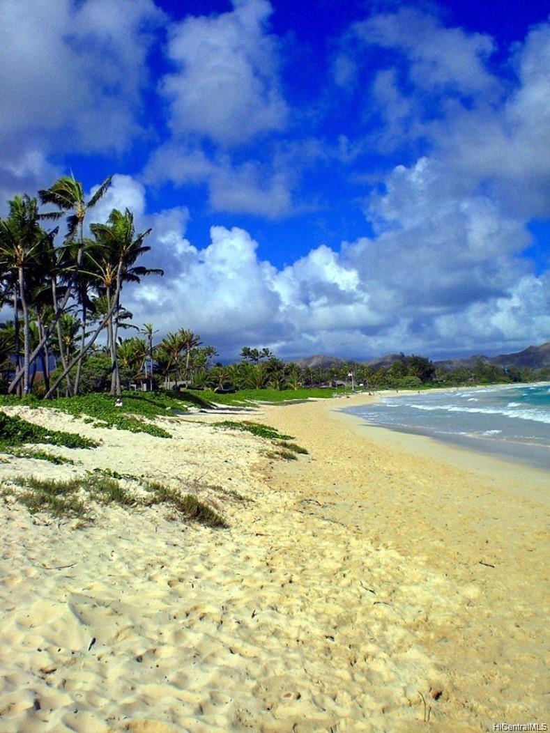 361 Kalaheo Ave Kailua - Rental - photo 2 of 20