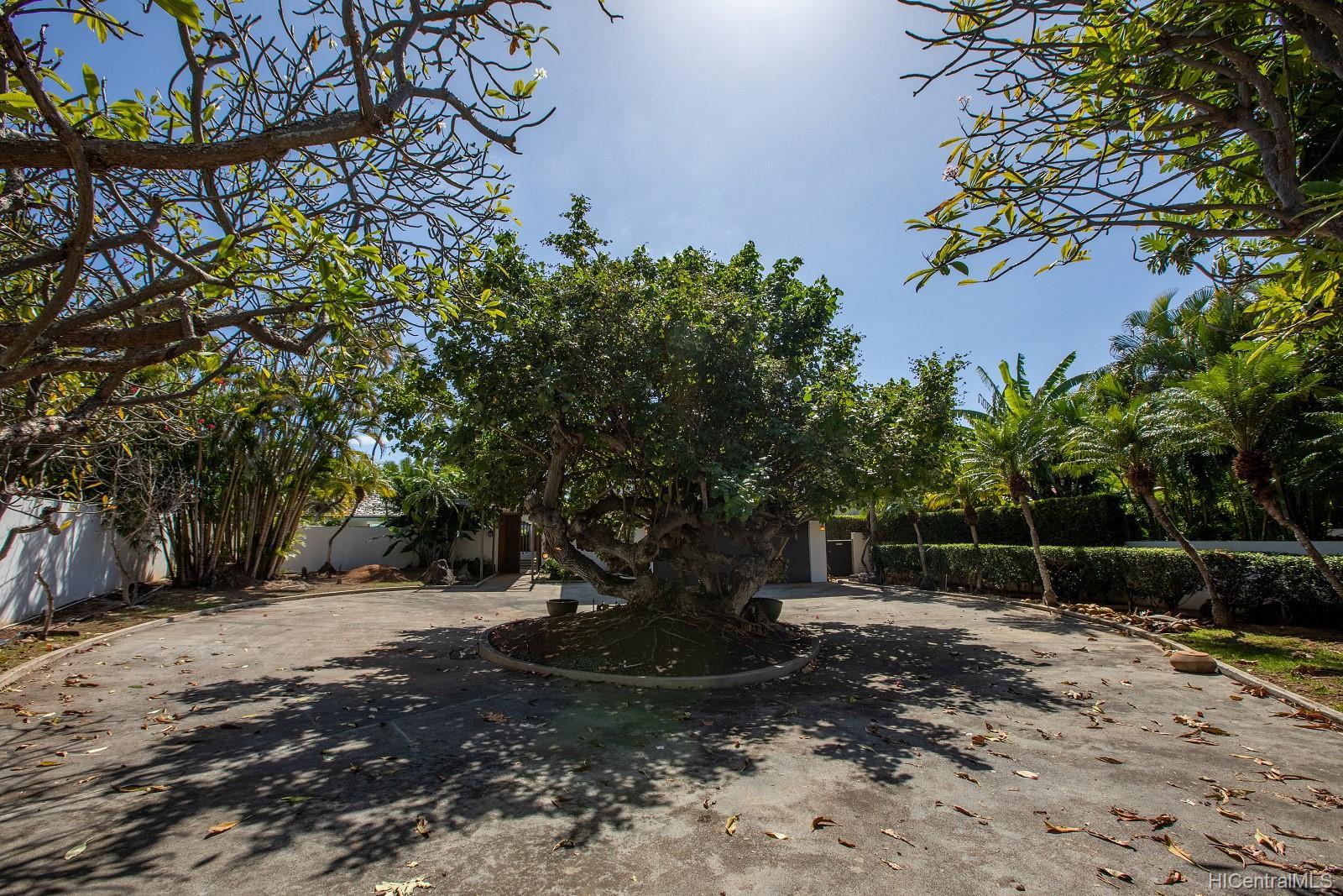 4383  Royal Place Kahala Area, Diamond Head home - photo 11 of 24
