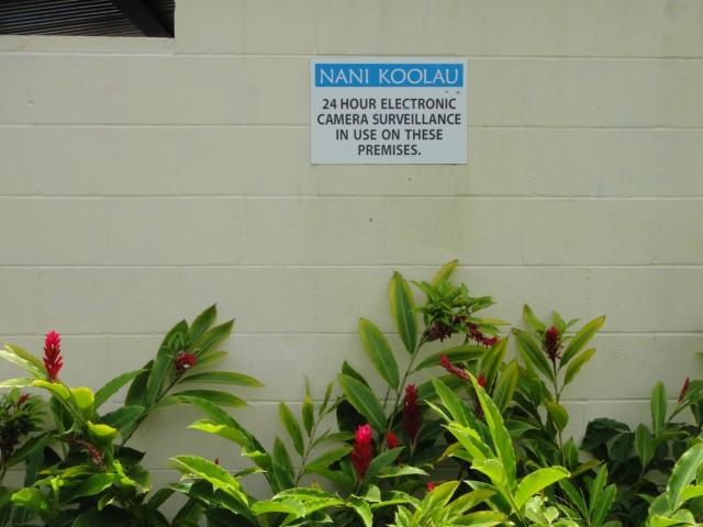 Nani Koolau condo # B104, Kaneohe, Hawaii - photo 21 of 23