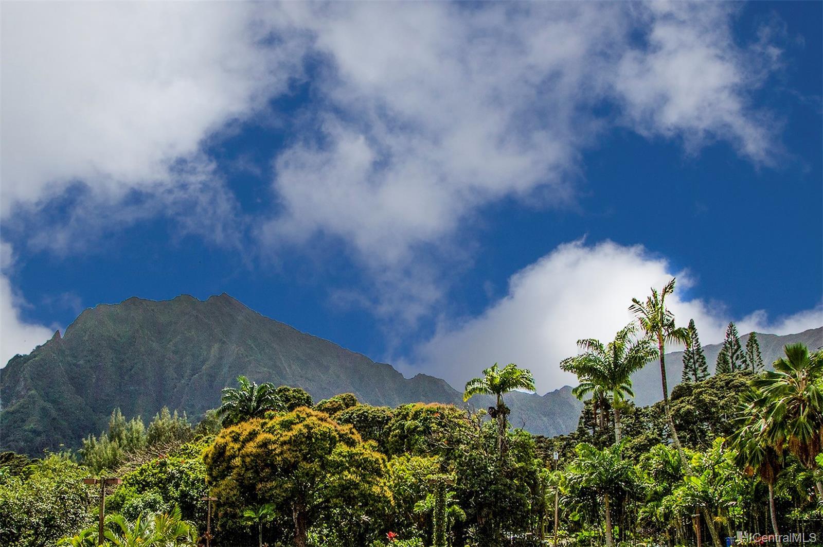 46-324 Haiku Road townhouse # 106, Kaneohe, Hawaii - photo 6 of 24