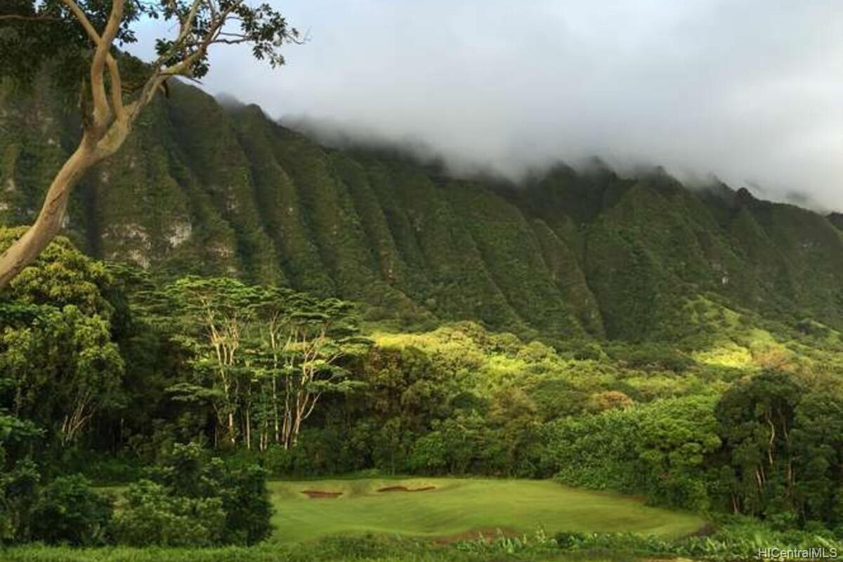 Kahaluu Gardens condo # B101, Kaneohe, Hawaii - photo 15 of 16