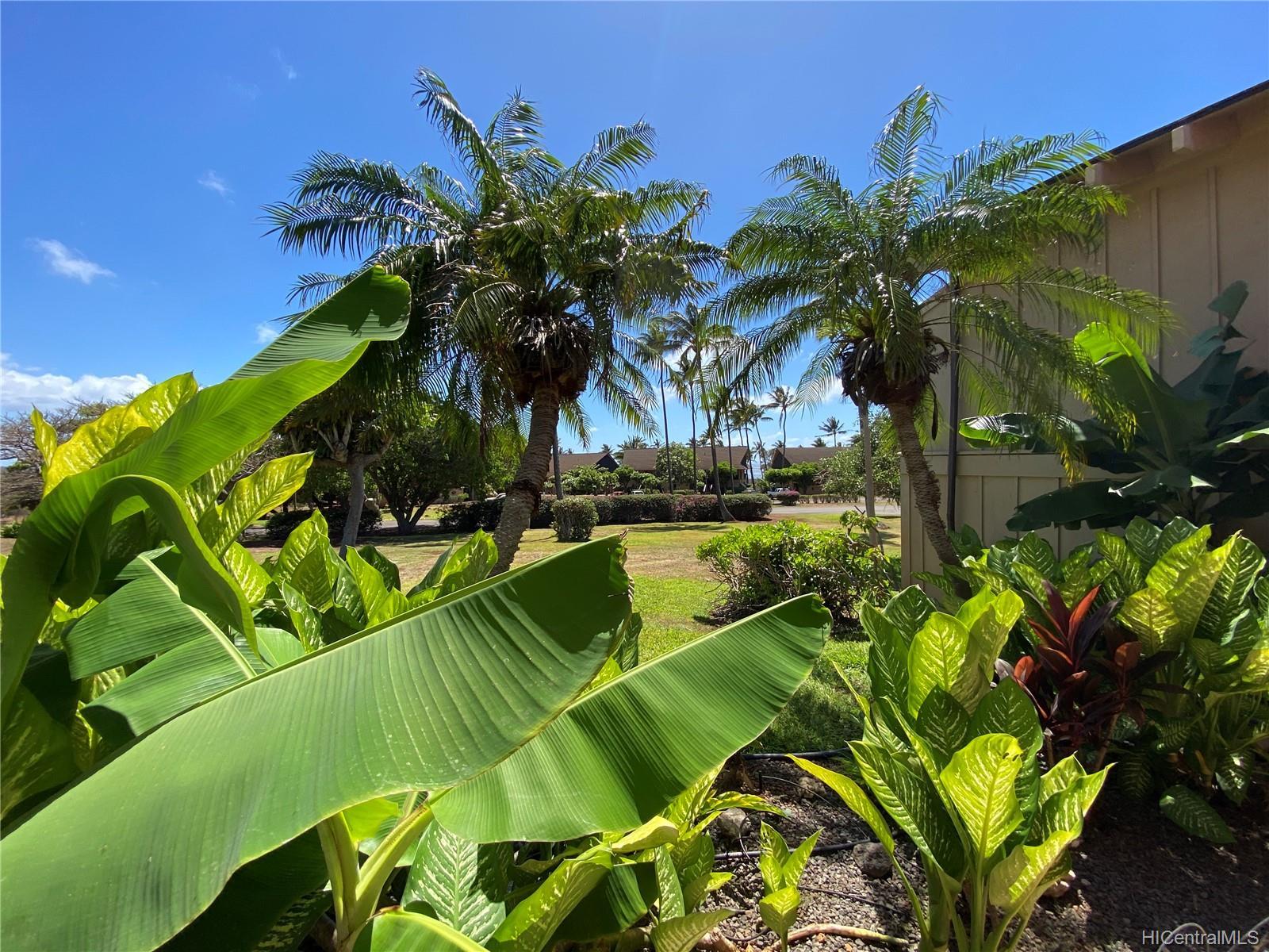 KE NANI KAI condo # 105, Maunaloa, Hawaii - photo 19 of 22