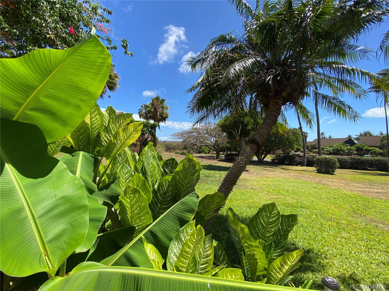 KE NANI KAI condo # 105, Maunaloa, Hawaii - photo 22 of 22