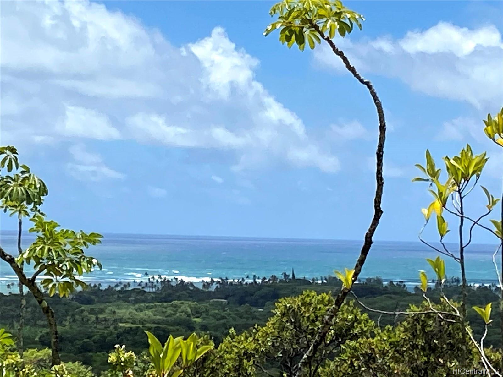 53-372M Kamehameha Hwy 6 and 11 Hauula, Hi 96717 vacant land - photo 2 of 24
