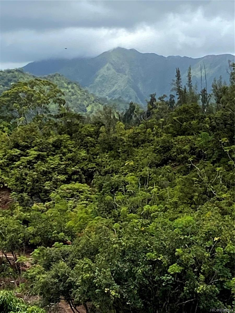 53-372M Kamehameha Hwy 6 and 11 Hauula, Hi 96717 vacant land - photo 11 of 24