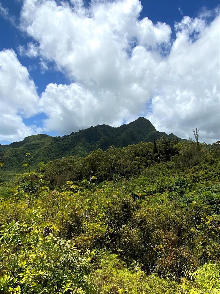 53-372M Kamehameha Hwy 6 and 11 Hauula, Hi 96717 vacant land - photo 12 of 24