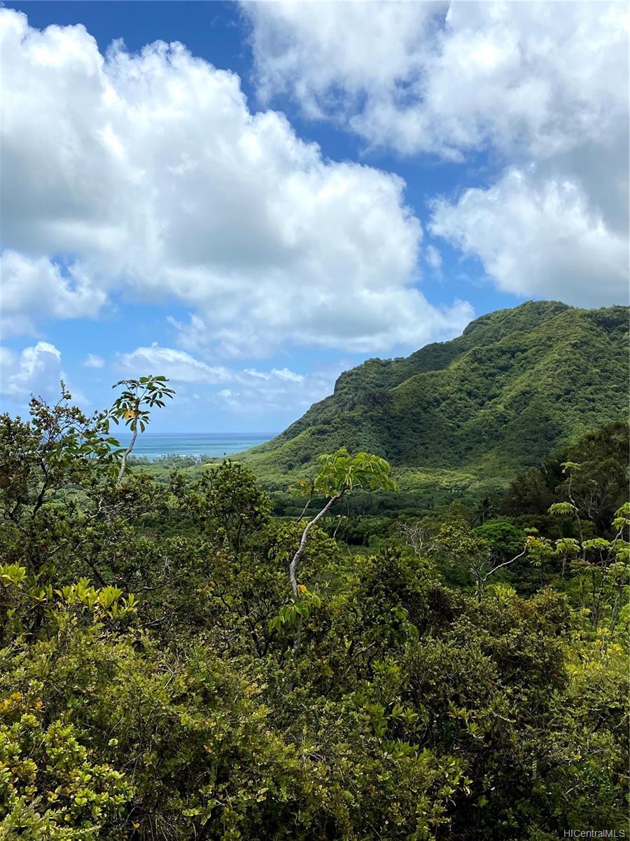 53-372M Kamehameha Hwy 6 and 11 Hauula, Hi 96717 vacant land - photo 13 of 24