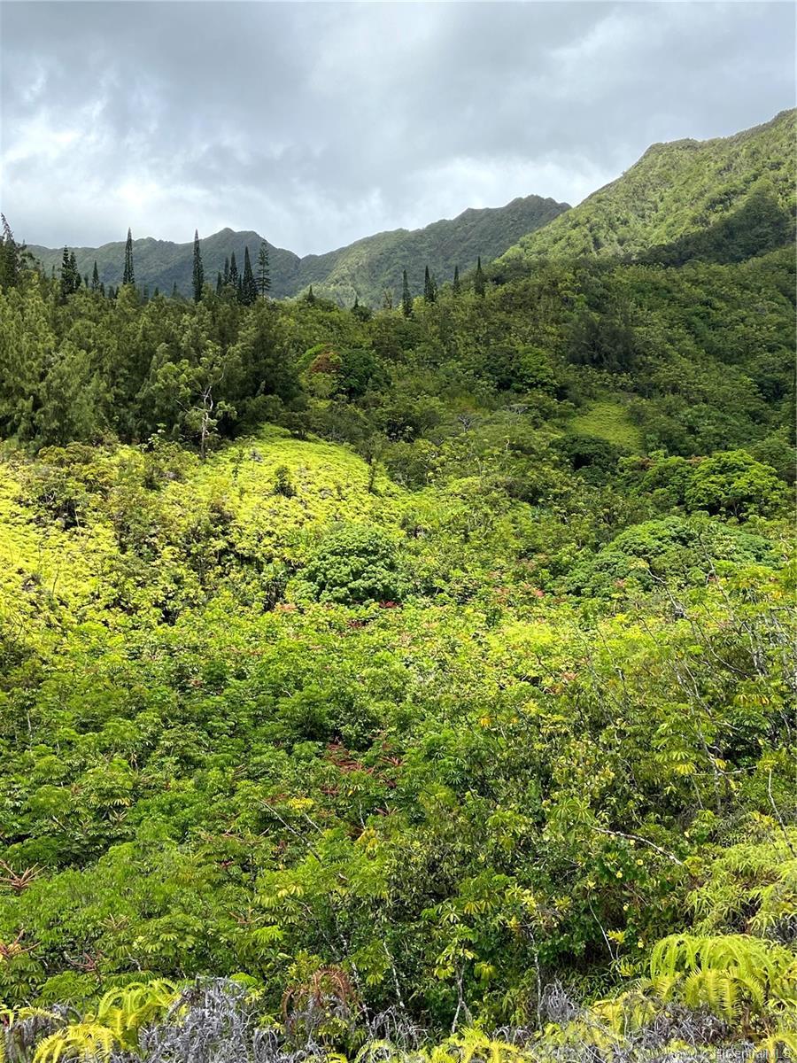 53-372M Kamehameha Hwy 6 and 11 Hauula, Hi 96717 vacant land - photo 15 of 24