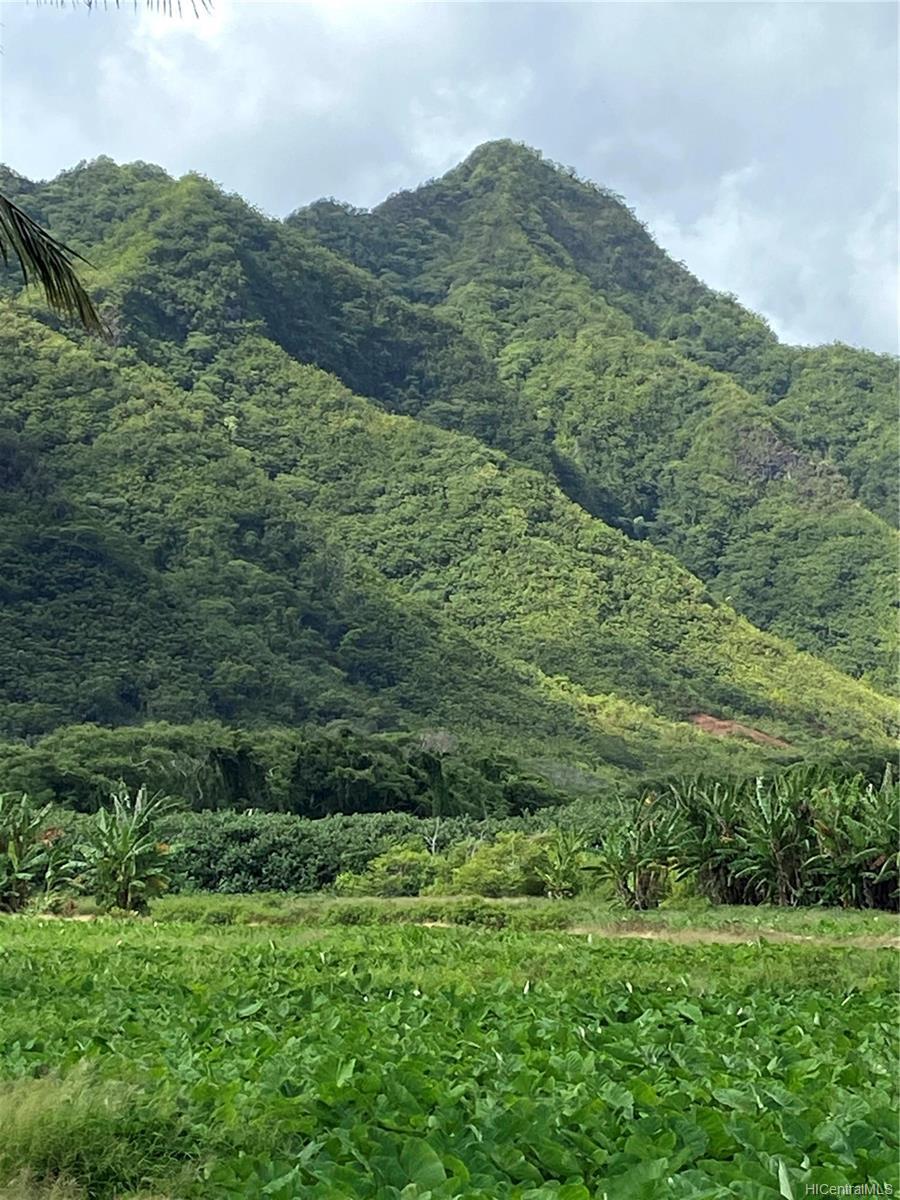 53-372M Kamehameha Hwy 6 and 11 Hauula, Hi 96717 vacant land - photo 23 of 24
