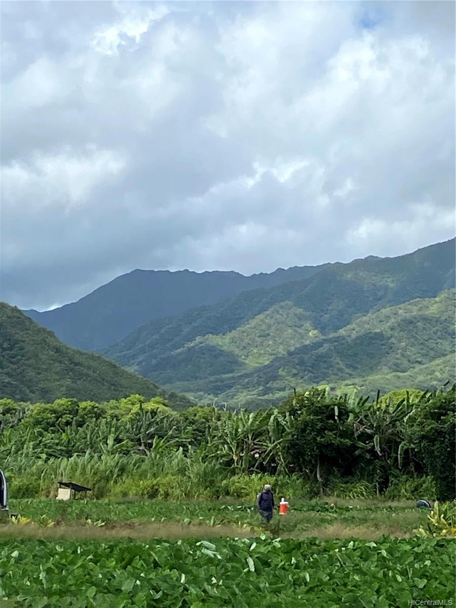 53-372M Kamehameha Hwy 6 and 11 Hauula, Hi 96717 vacant land - photo 24 of 24