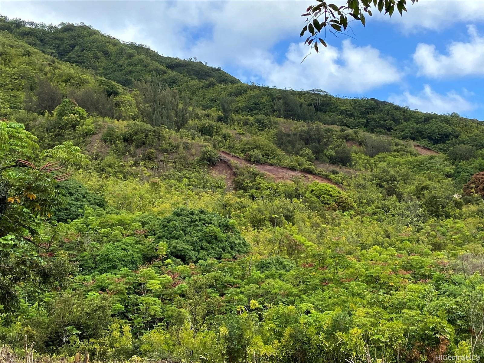 53-372M Kamehameha Hwy 6 and 11 Hauula, Hi 96717 vacant land - photo 4 of 24