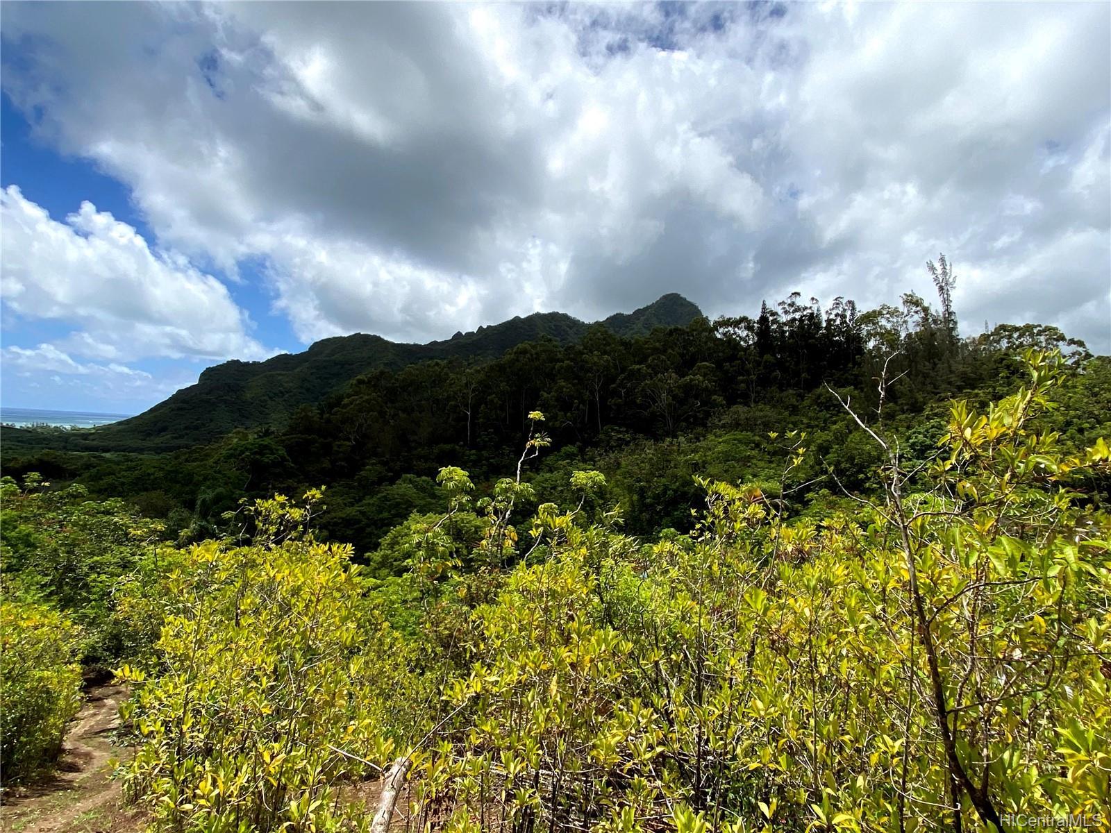 53-372M Kamehameha Hwy 6 and 11 Hauula, Hi 96717 vacant land - photo 7 of 24