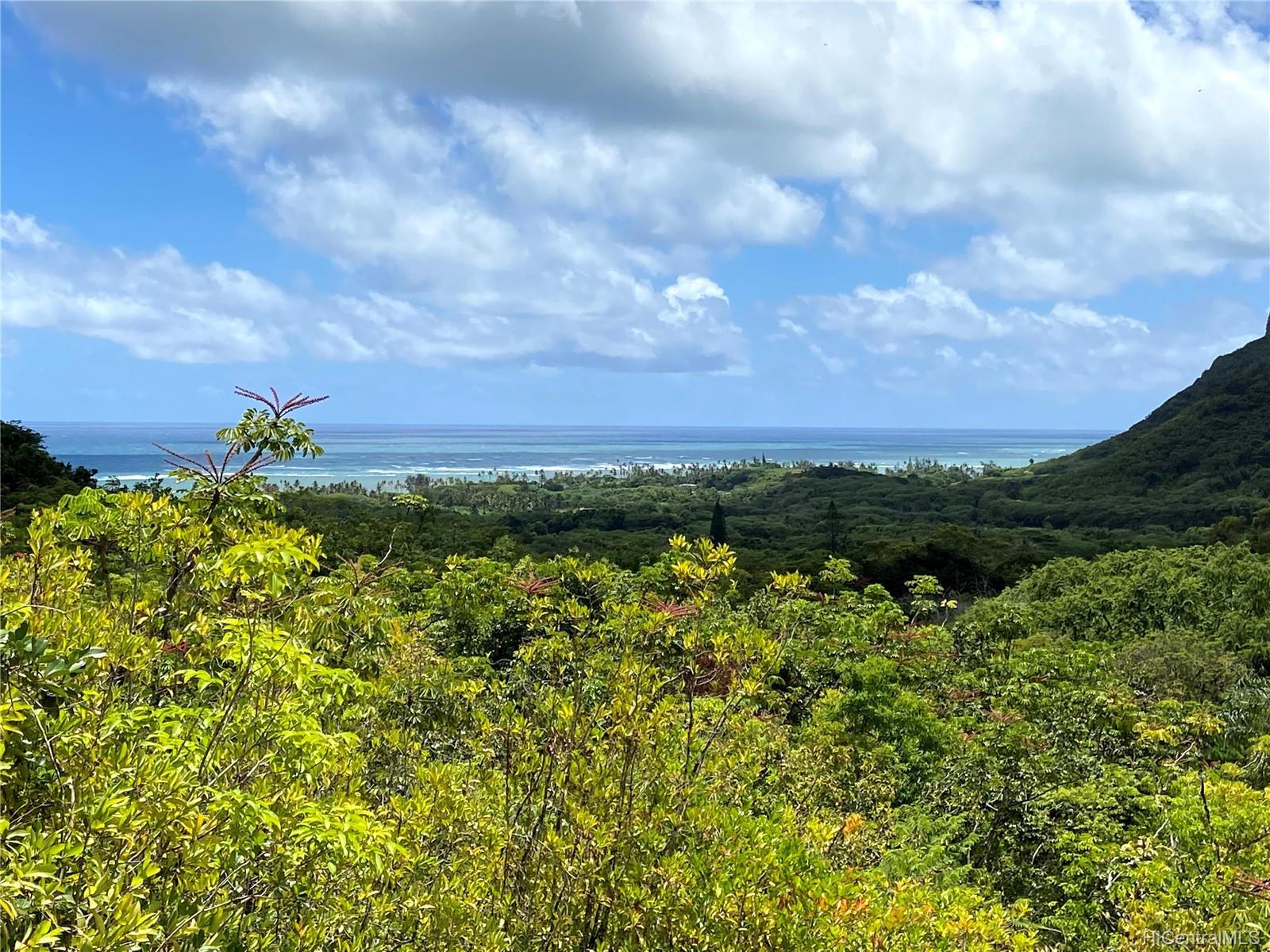 53-372M Kamehameha Hwy 6 and 11 Hauula, Hi 96717 vacant land - photo 8 of 24