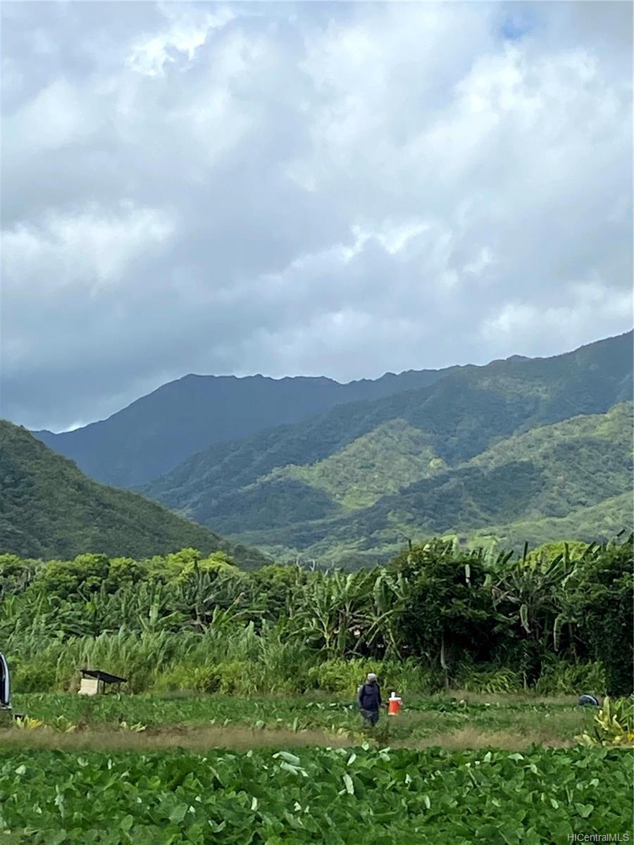 53-372M Kamehameha Hwy 6 and 11 Hauula, Hi 96717 vacant land - photo 10 of 24
