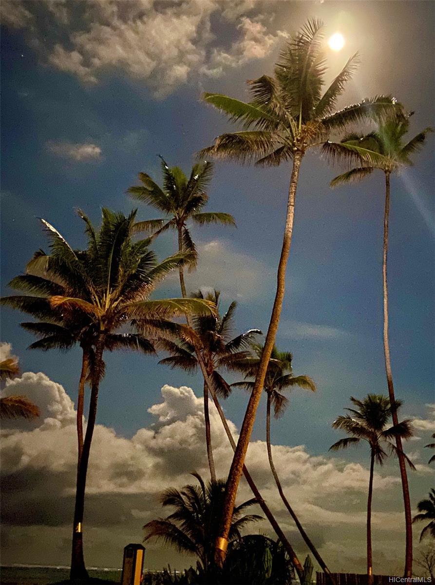 Pats at Punaluu condo # 216, Hauula, Hawaii - photo 18 of 24