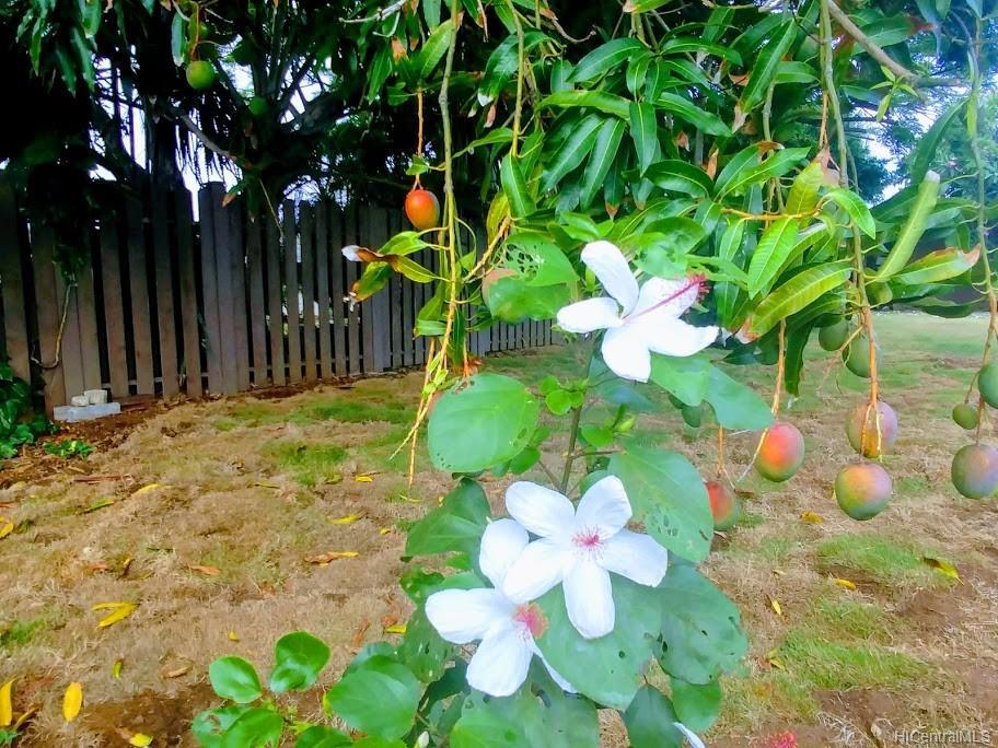 592  Poipu Drive Triangle, Hawaii Kai home - photo 15 of 23