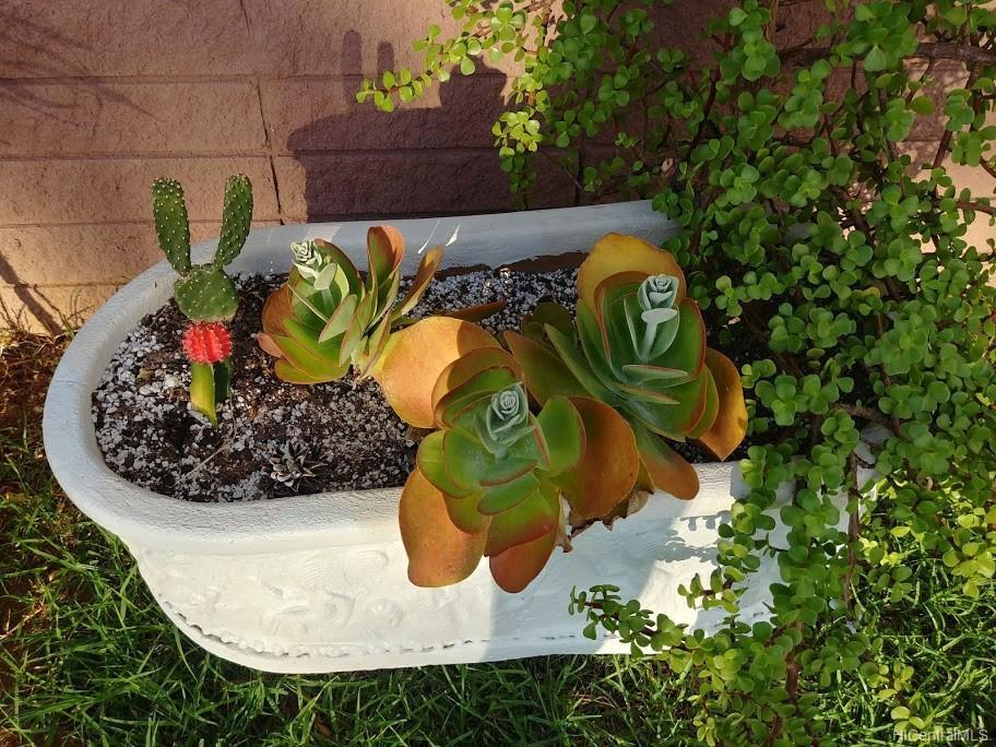 592  Poipu Drive Triangle, Hawaii Kai home - photo 22 of 23