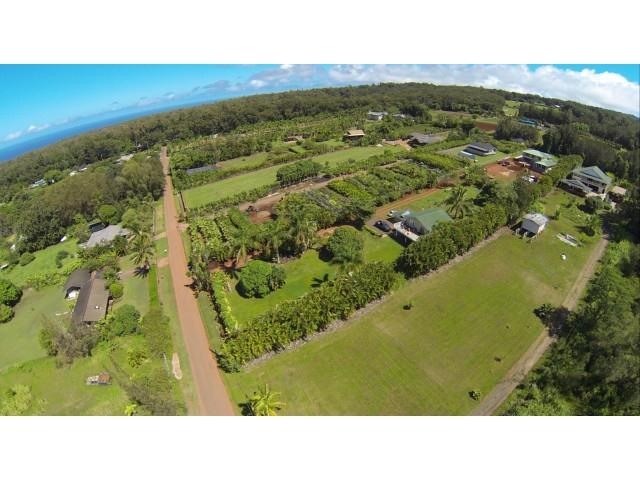 59-756 Kanalani Pl  Haleiwa, Hi 96712 vacant land - photo 19 of 20