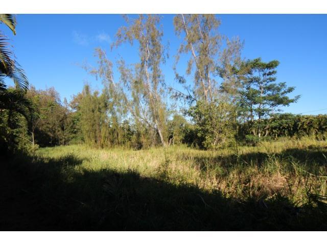59-756 Kanalani Pl  Haleiwa, Hi 96712 vacant land - photo 6 of 20