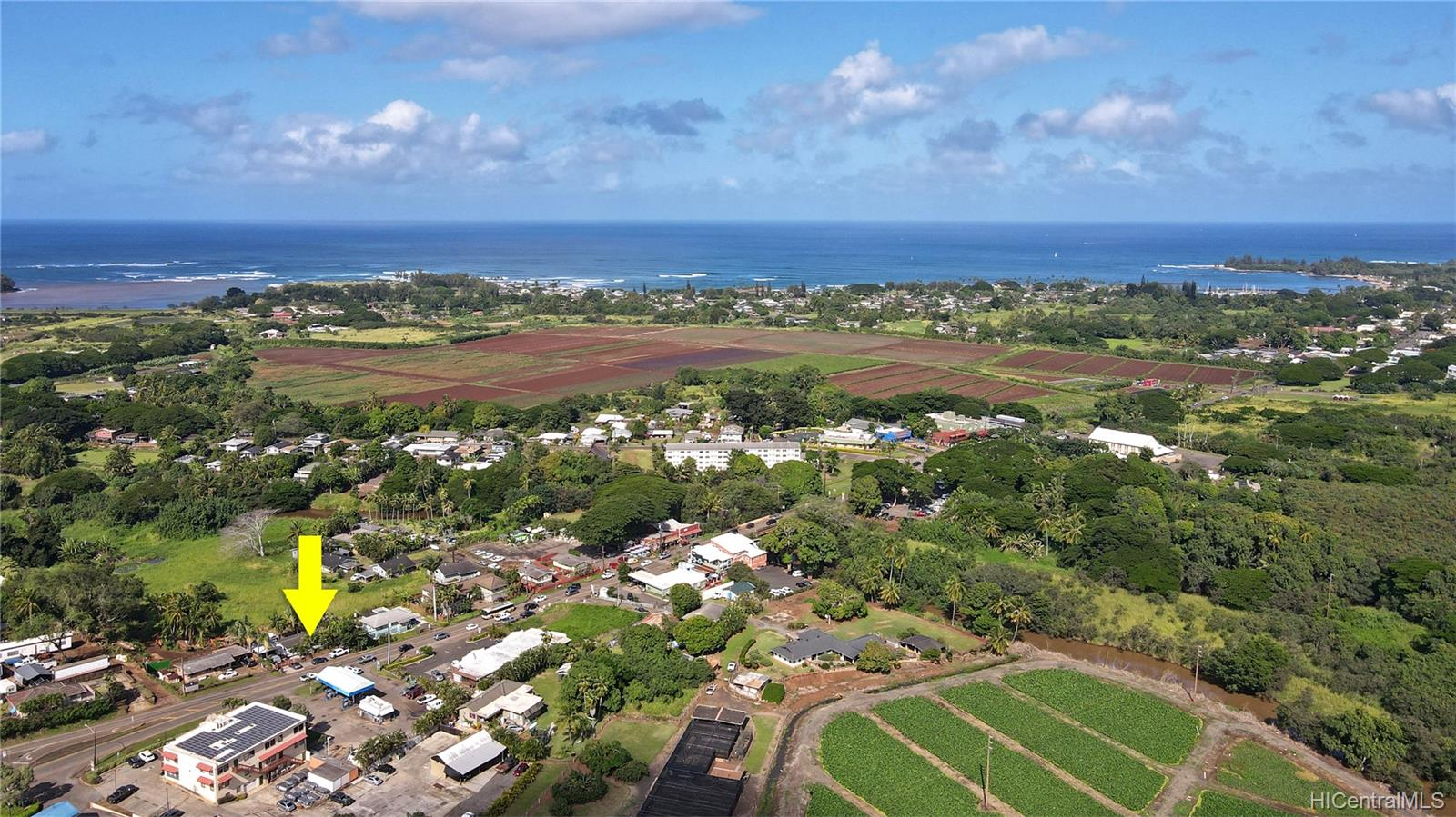 66-569  Kamehameha Hwy Waialua, North Shore home - photo 6 of 24