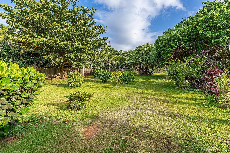 68-631 Crozier Drive  Waialua, Hi 96791 vacant land - photo 18 of 20