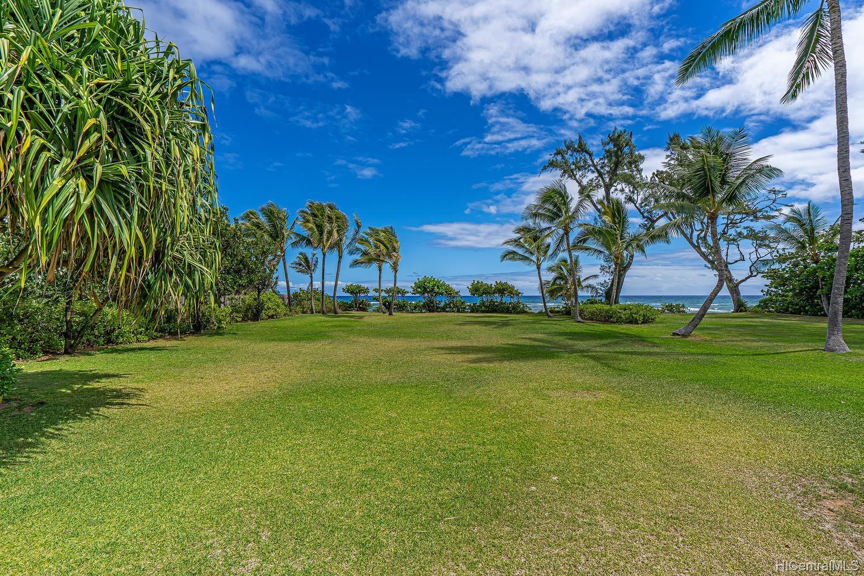 68-631 Crozier Drive  Waialua, Hi 96791 vacant land - photo 6 of 20