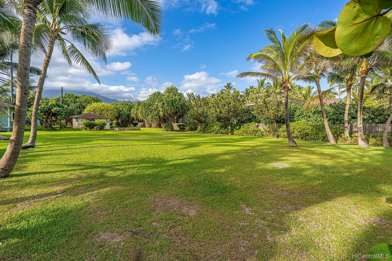 68-631 Crozier Drive  Waialua, Hi 96791 vacant land - photo 7 of 20