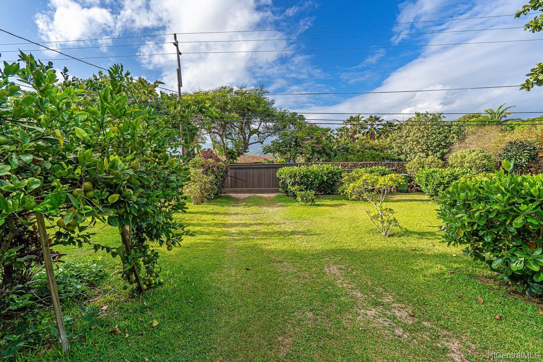 68-631 Crozier Drive  Waialua, Hi 96791 vacant land - photo 9 of 20